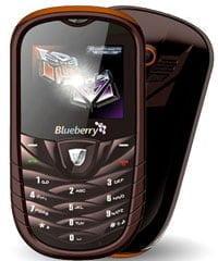 CSL-Blueberry-120