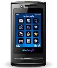 CSL-Blueberry-G9