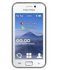 Polytron-PG3000T